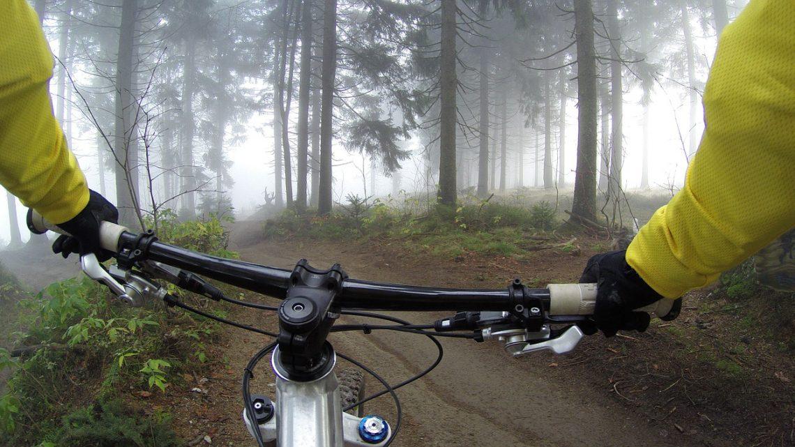 Leder du efter det helt rigtige tilbud på elcykler?